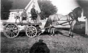 """Som ellers i Rolvsøy var bygdeveien på Evje best egnet for hestekjøretøyer i tiden frem mot 1940. Kjøpmann Adolf Ramberg på Evje fikk daglig leveranser av melk og brød med """"Trippe-båten"""" fra Sellebakk. Guttungene syntes det var stor stas å få kjøre med hest og vogn ned forbi verkene til Evjebrygga for å hente varer. Det var samme type vogn som bøndene fraktet melk til meieriet med. Bjarne Engebretsen og onkelen Tidemann Gustavsen sitter på melsekkene, mens Edgar (Johansen) Fjellheim (f. 1920) er kusk. Hver fredag ble det kjørt ut varer til kundene. I siste halvdel av 1930-tallet kjøpte Roald Ramberg en personbil som også ble brukt til varetransport. Bak i bilen var det plass til to melkespann. Roald Ramberg var tredje generasjons kjøpmann på Evje. Når det ankom varer til Evje-brygga med """"Trippen"""" fra Sellebakk kunne det holde med en dragkjerre for transporten opp til butikken. Hest og vogn var nødvendig om det skulle hentes varer fra byen. Lokale unggutter hjalp gjerne til. Fra venstre: Bjarne Engebretsen, Tidemann Martinsen og Edgar Fjellheim. Kilde: Rolvsøy bygdebok. Fotograf ukjent. (Østfold Fylkes Billedarkiv). Informant: Edgar Fjellheim."""