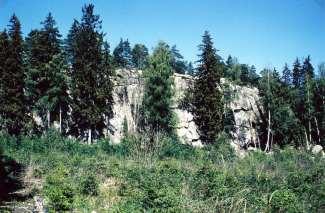 Bilde 19: Litt nord for plassen Borgeli skimtes i dag fra veien en steil fjellvegg som har vært en del av et befestningsverk. På toppen er et platå med bra utsikt. På nord og vestskrentene ligger rundkamp. Stenen har vært en del av befestningsverket som skulle hindre fienden i å trenge inn. Slike bygdeborger var vanlige i folkevandringstiden (ca 400-570 e.Kr.) Det ligger også en bygdeborg på Høidal. Foto: Odd Ketil Johnsen