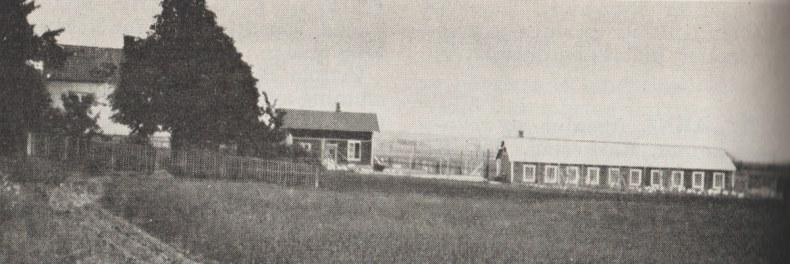 Haugeli hønseri. Foto: Det Norske Næringsliv