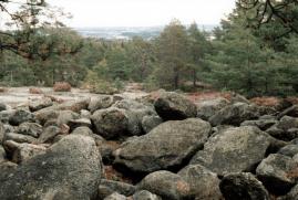 """På fjellplatået SV i Rådalen (""""Vesti""""), ca 800 m NV for husene på gården (gnr. 738, bnr. 3,5,11,12) ligger en rund røys bygd opp av store rundkamp. Det er denne røysa som er avbildet. Det lå en liknende røys 150 m NØ for gården som ble tillatt fjernet. Røysa lå i sydenden av nåværende Råkollen skole, på stedet hvor Råkollbakken lå."""
