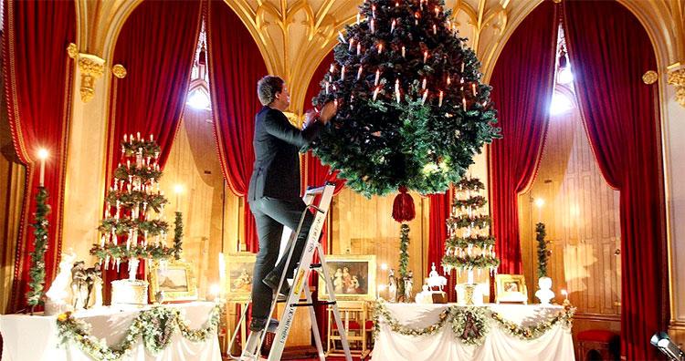 windsor_castle_tree