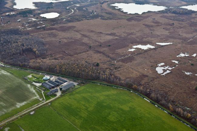 Landbouwbedrijf op de grens van het PAS-natuurgebied De Groote Peel. Beeld Hollandse Hoogte, Siebe Swart