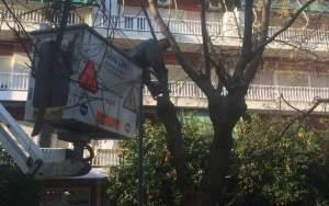 Παρεμβάσεις καθαριότητας του Δήμου Αθηναίων στις πλατείες Κάνιγγος, Βαρνάβα και Αγίου Αντωνίου