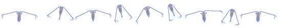 Animation nage copépode