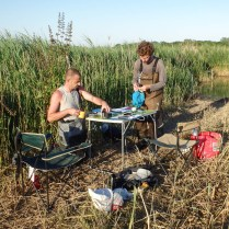 Benjamin Vollot (on the left) and Pierrick Devoucoux (on the right) organize the ring table in reed bed