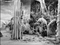 002 The Daleks (TV Story) (4)