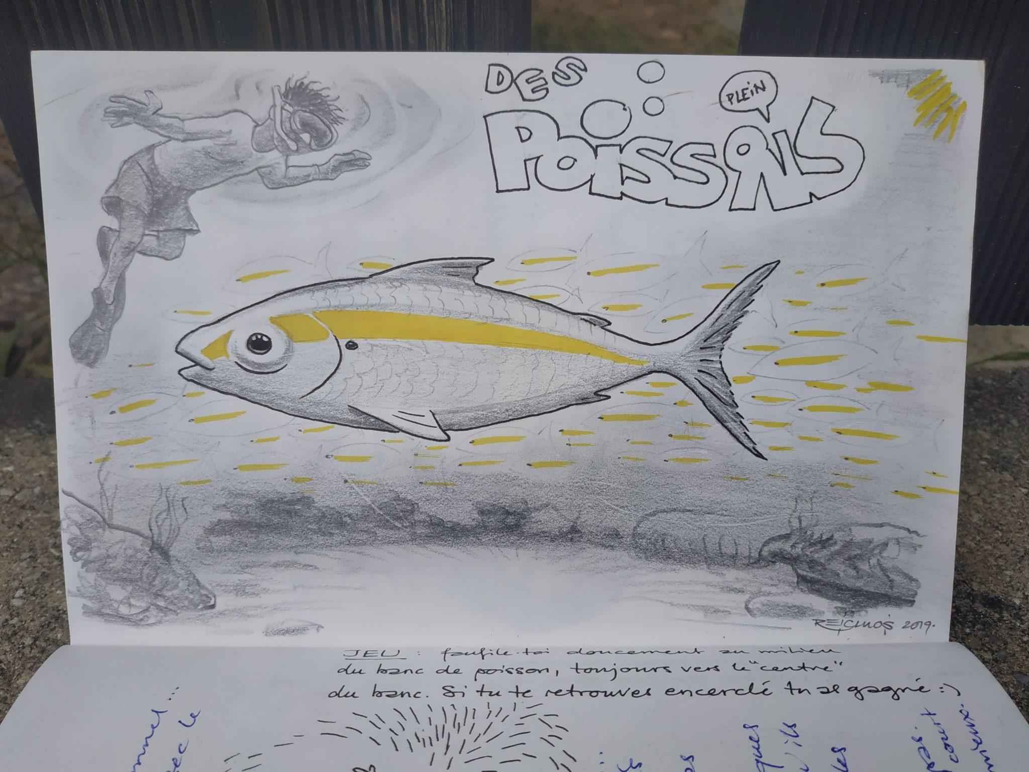 Iles Perhentian - les bancs de poissons (dessin)