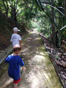 Les chemins de Penang Hill