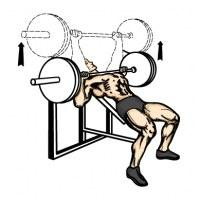 Advanced Muscle Gain Strategy 1 Image