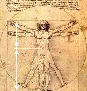 The Golden Ratio & The Perfect Body Image