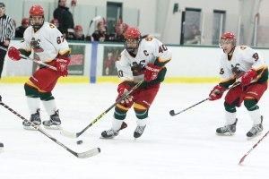entrenamiento de hockey sobre pista