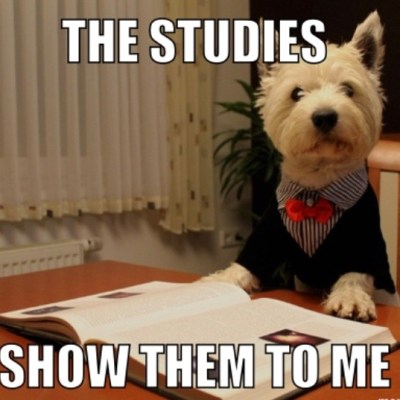 The Studies Dog