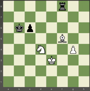 chess overprotection 5