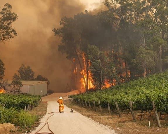 """(Video) George Gima: """"În Australia a ars până acum o suprafață cam cât Republica Moldova. 18 persoane decedate, mii de case distruse, mii de sinistrați, și milioane de animale moarte. E o catastrofă umană și de ecosistem uriașă, provocată de..."""" 1"""