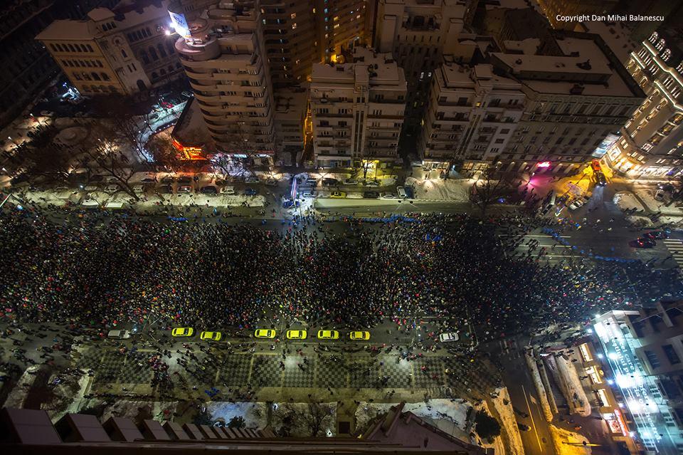 Prostia serii la Romania TV! Oameni și CÂINI plătiți să meargă la protest. Vezi cât s-ar fi plătit pentru un câine: