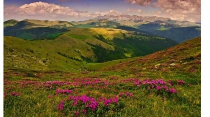 """Prințul Charles: """"Prietenii mei români ... Noi, toți cei din restul lumii, avem ceva de învățat de la aceste peisaje cultivate ale Transilvaniei"""" 2"""