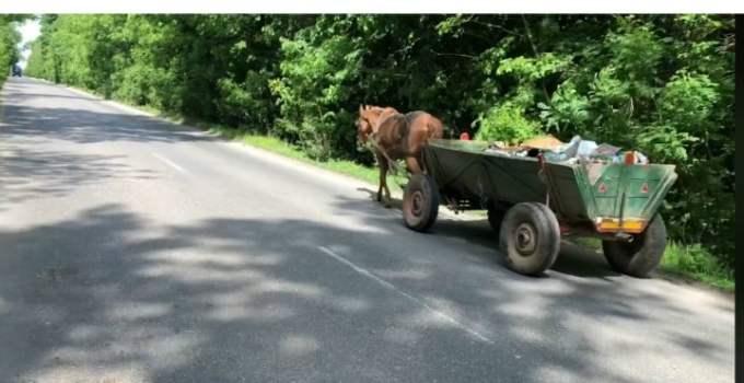 """(Video) Lucian Mindruta:  """"Marian Antonescu strange gunoiul de pe marginea drumului.In fata e calul, care stie drumul. In spate, Marian se opreste si mai ia cate o mizerie. Intr-un kilometru si ceva a umplut caruta. Si face asta LA FIECARE DOUA SAPTAMANI!  Pe cat de mizeri suntem, pe atat de ..."""" 18"""