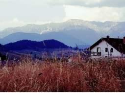 """""""Ai zice că locul ăsta e în Tirol sau în Elveția, dar nu e. E la 170 de kilometri de Bucureşti. Casele sunt coconoase, curțile curate, oamenii de treabă şi seara miroase a lapte şi bălegar. E linişte d-aia înaltă cu stele. Un rai..."""" 44"""