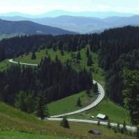 Bucovina (Bukovina)