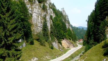 Dambovicioarei gorge Carpathians Romania