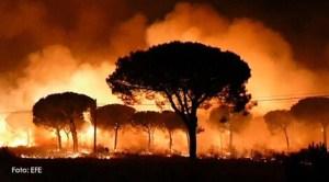 Incendiu în Parcul Natural Doñana
