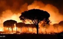 HUELVA: Parcul Natural Doñana în flăcări