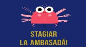 Stagii la Ambasada României la Madrid