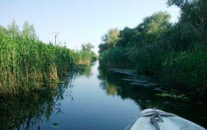 Narrow Channels in the Danube Delta