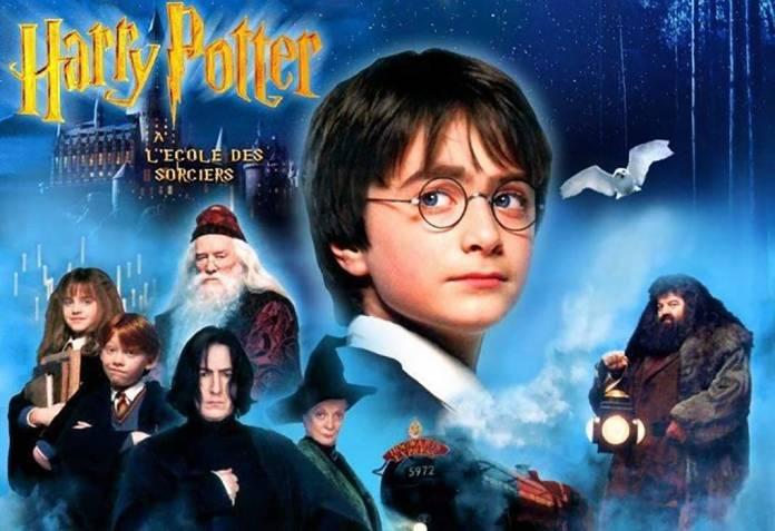 Zorlu PSMde Harry Potter Ateşi Partis Temporus
