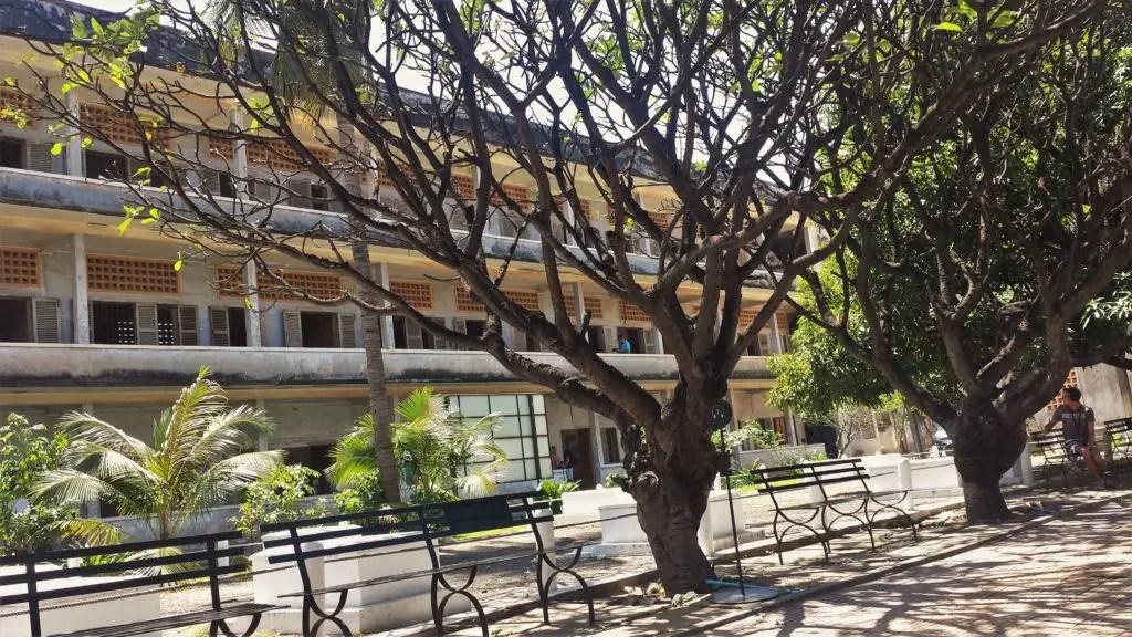 Trees in the park in Phnom Pehn, day 1 in Cambodia
