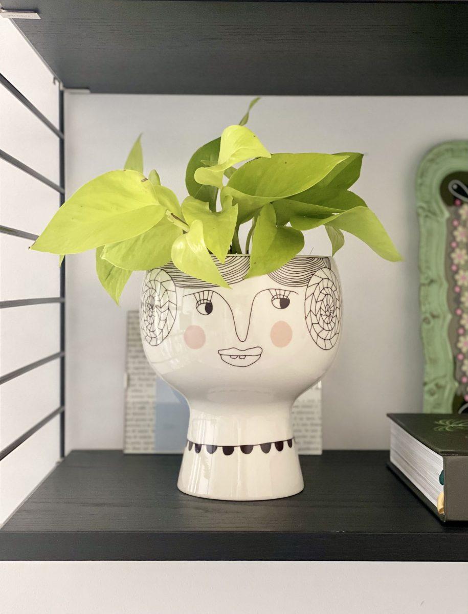 Complementi d'arredo made in italy a ottimi prezzi. Vasi Per Piante Da Interno Di Design La Nostra Selezione
