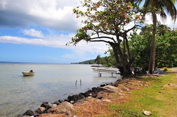 moorea-beautiful-beachside