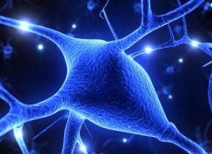 sclerosi multipla farmaco miracoloso