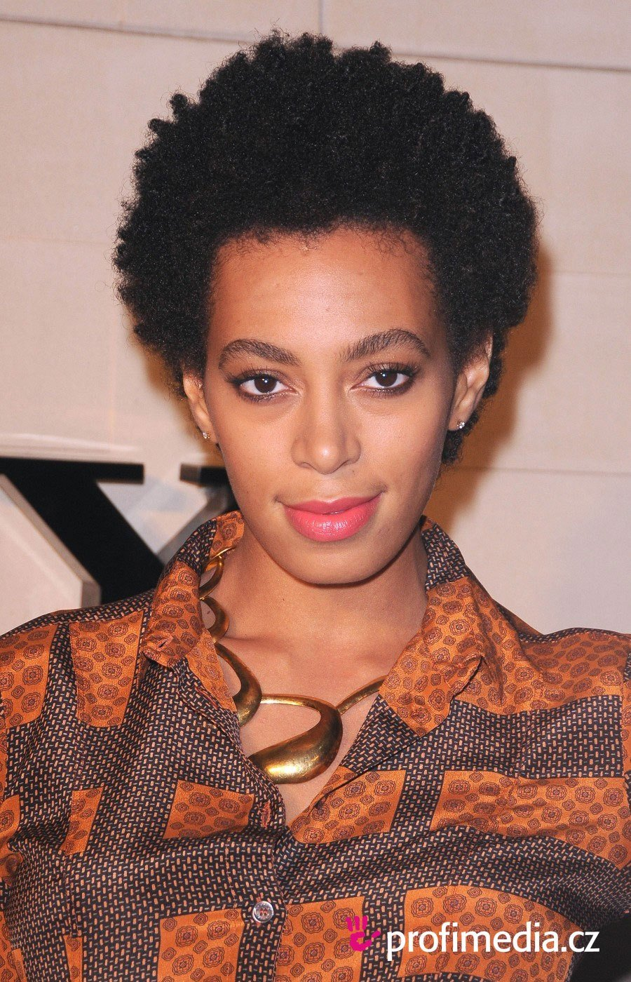 The Best Solange Knowles Hairstyle Easyhairstyler Pictures