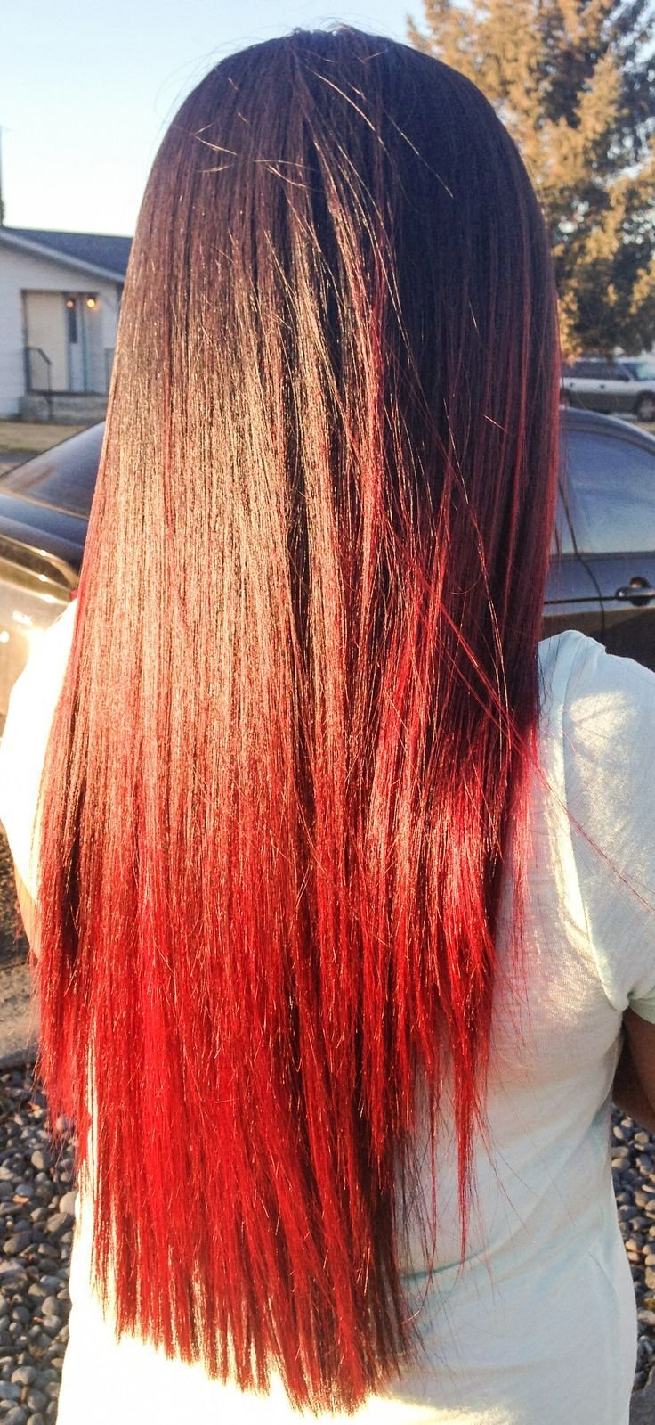 The Best Best 25 Hair Tips Dyed Ideas On Pinterest Pastel Hair Pictures