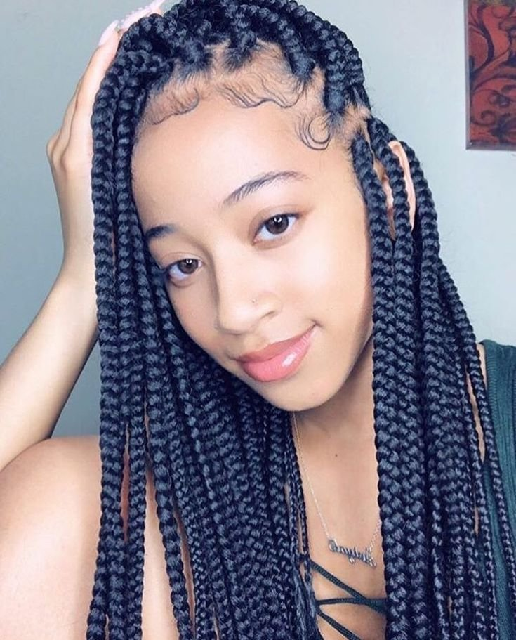 The Best Box Braids Protective Hairstyles Braided Hairstyles In Pictures