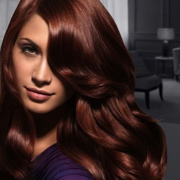 The Best Best 25 Deep Auburn Hair Ideas On Pinterest Dark Red Haircolor Long Auburn Hair And Auburn Pictures