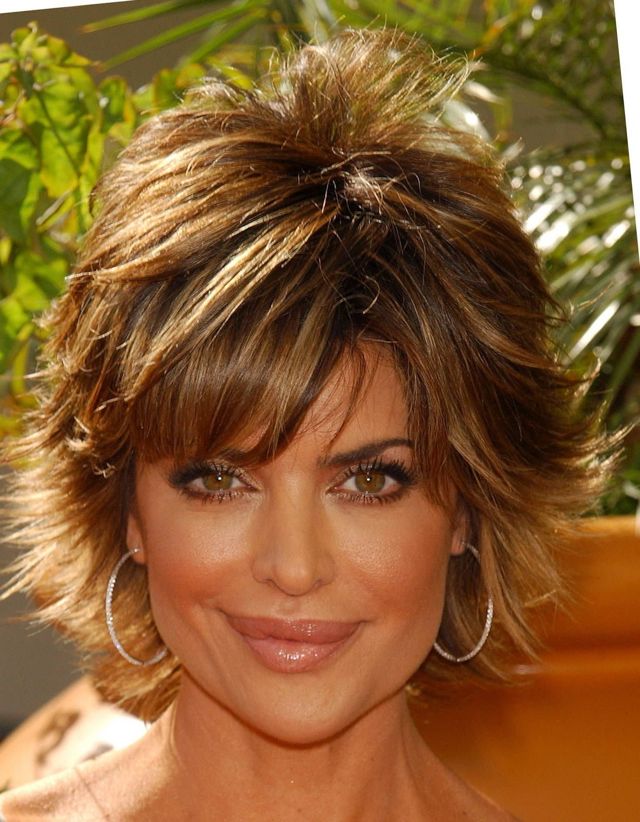 The Best Lisa Rinna 12789 My Style Hair Styles Short Hair Pictures