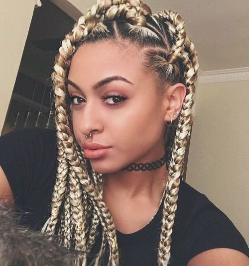The Best 20 Eye Catching Ways To Style D**K** Braids Pictures