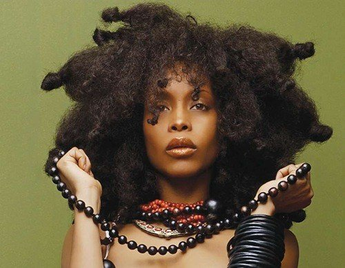 The Best Erykah Badu Hairstyles Vissa Studios Pictures