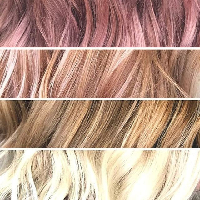 The Best 74 Paul Mitchell Hair Color Chart Download Corlukent Com Pictures