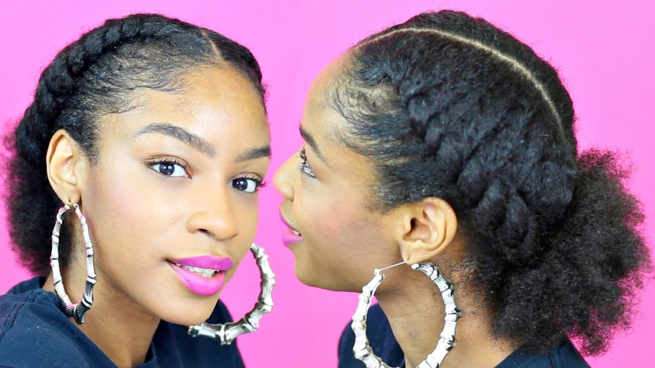 The Best Flat Twist Ponytail On Natural Hair Natural Hairstyles Pictures