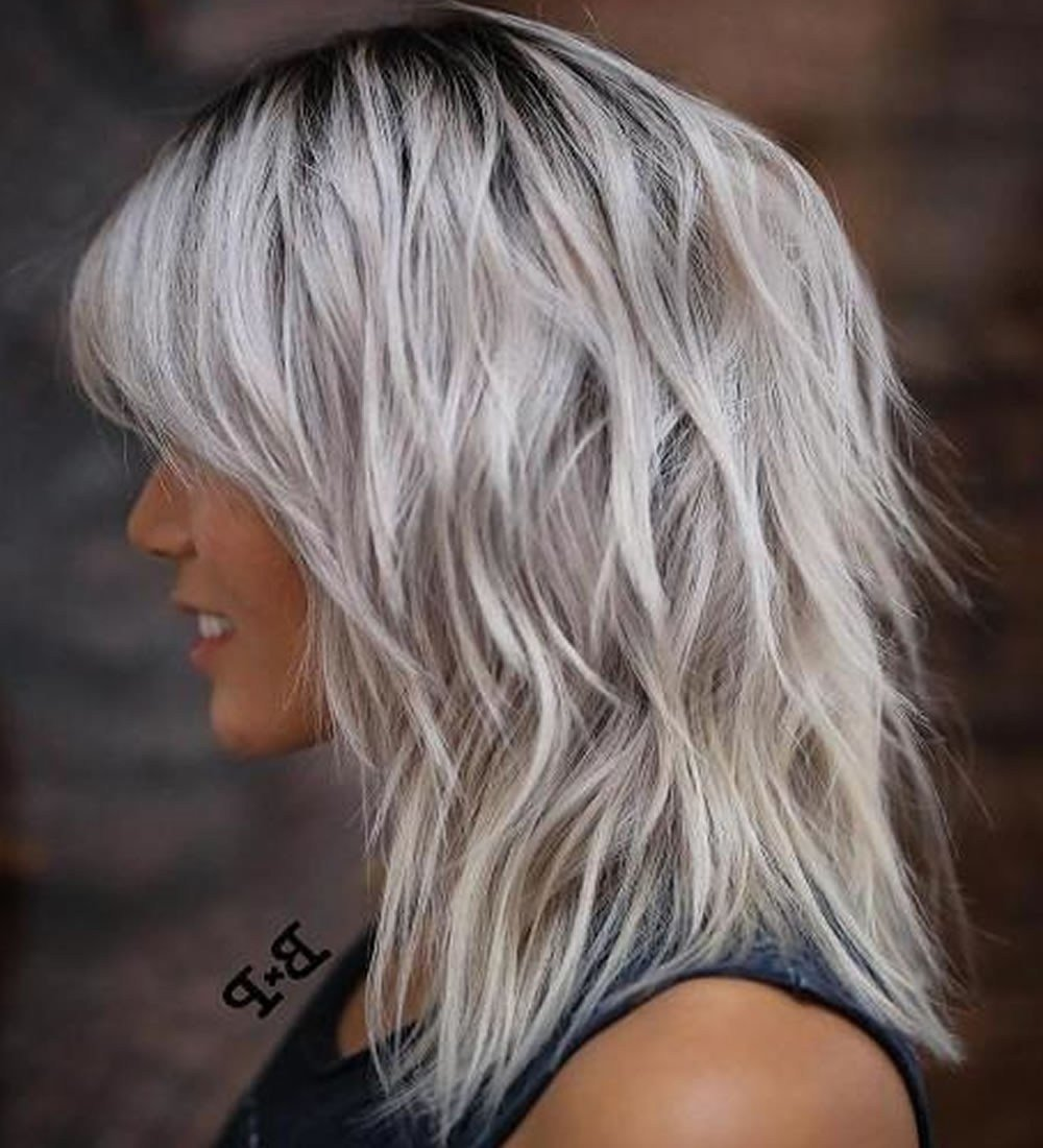 The Best 2019 Popular Sh*G Hairstyles For Thin Hair Pictures