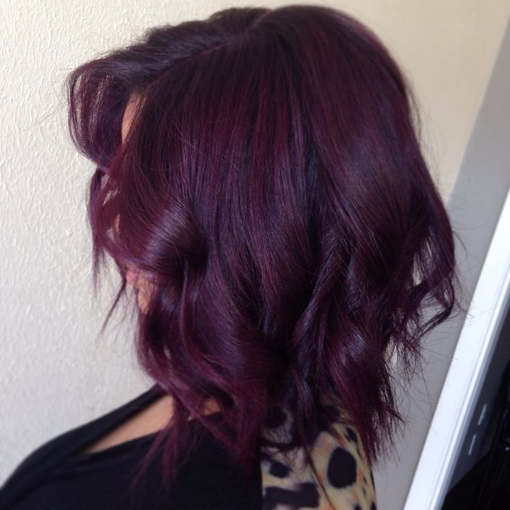 The Best Best 25 Eggplant Hair Ideas On Pinterest Highlight Hair Pictures