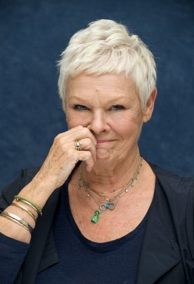 The Best 217 Best Images About Dame Judi Dench On Pinterest Pictures
