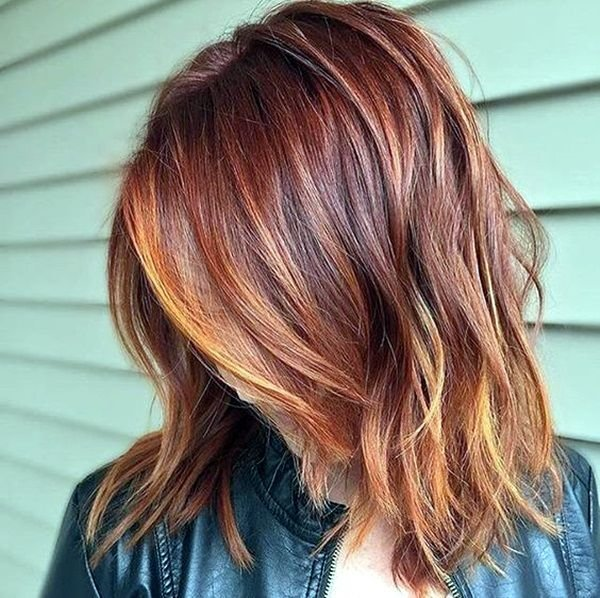 The Best 25 Best Fall Hair Ideas On Pinterest Fall Hair Color Pictures