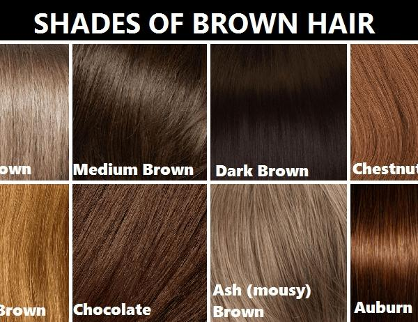 The Best 2 Awesome Light Brown Hair Color Chart – Home Idea Within Pictures
