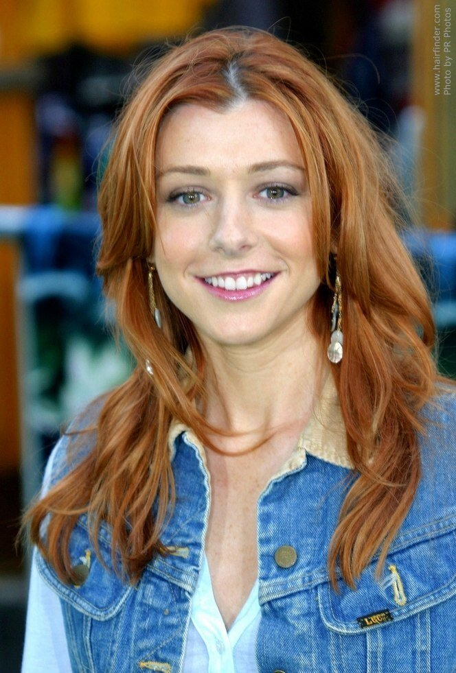 The Best Alyson Hannigan Wash And Go Style For Long Hair Pictures