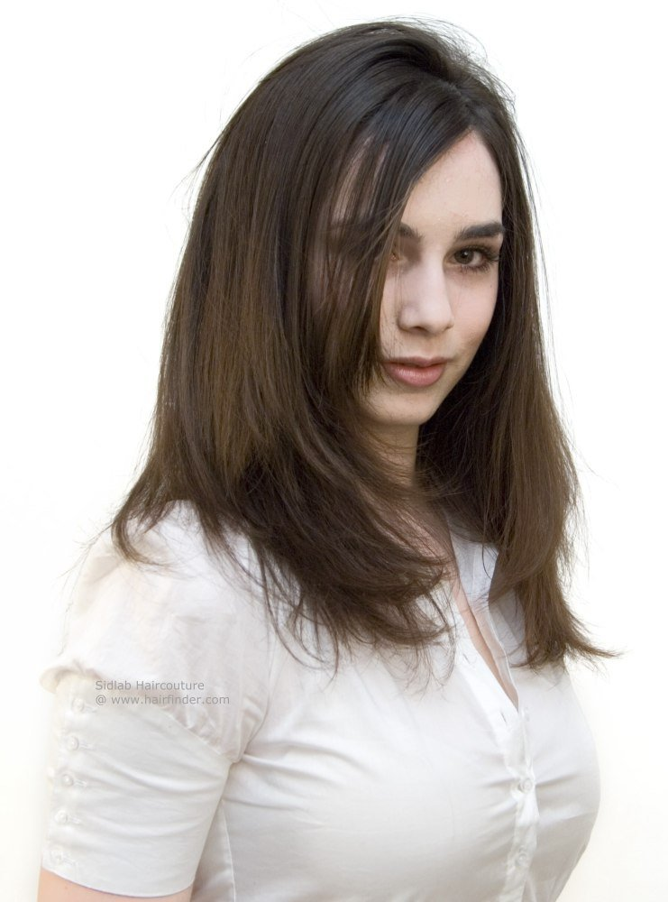 The Best Smooth And Long Fashion Hairstyle For Brunette Hair Pictures