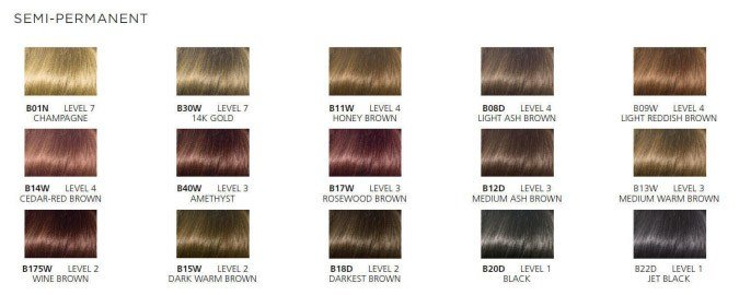 The Best Professional Clairol Hair Color Chart Image Search Results Pictures